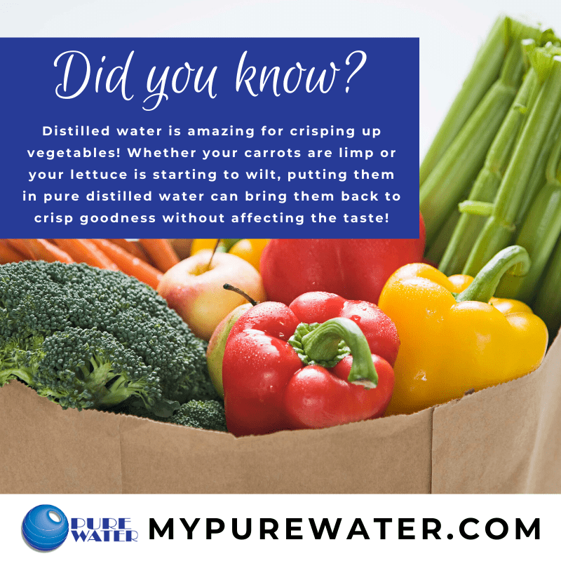 Did you know that distilled water can help keep your vegetables crisp and tasting great?