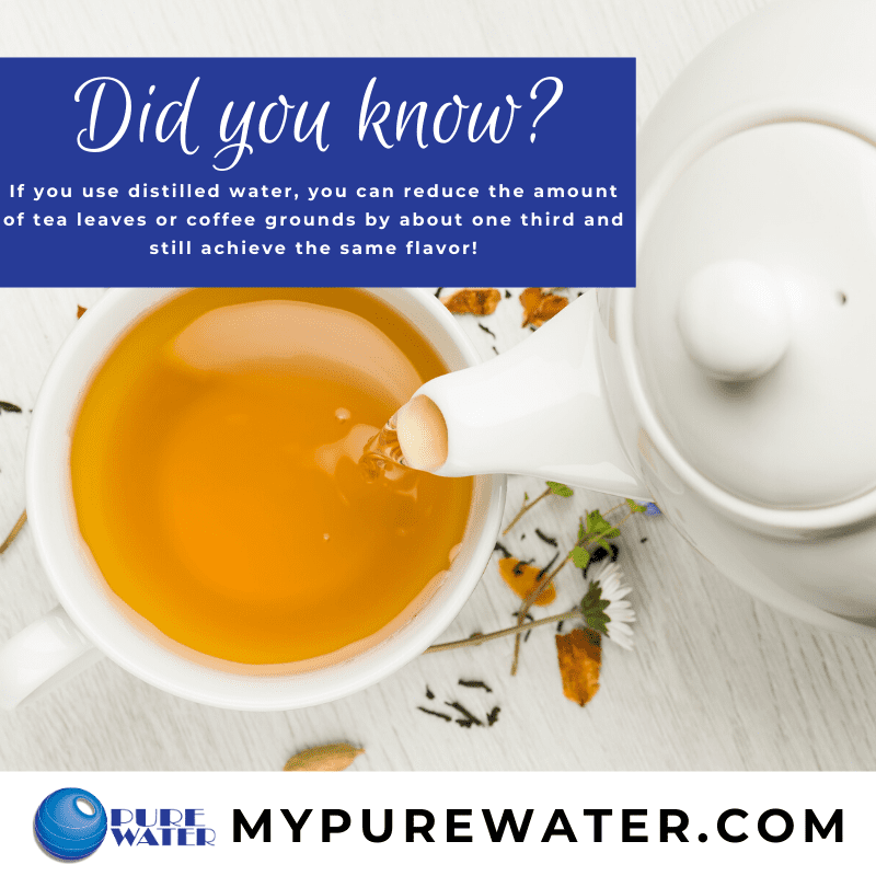 Did you know you need less tea leaves with distilled water?