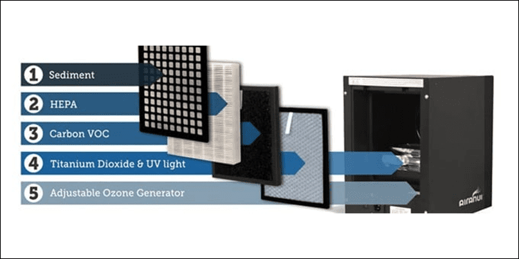 indoor air purifier for allergies
