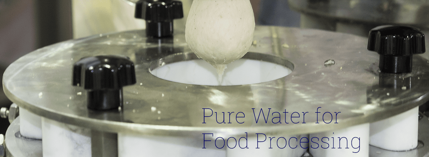 water for food processing